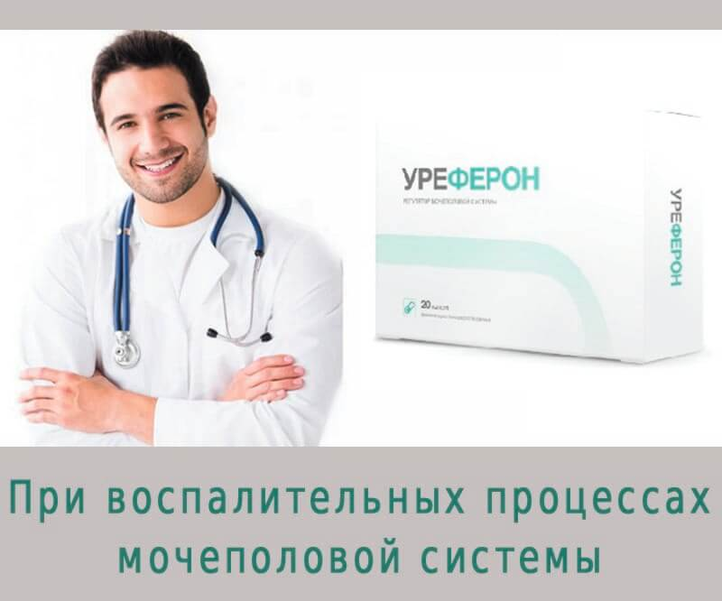 Уреферон состав, что входит в лекарства для недержания и простатита